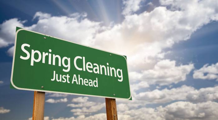 Spring Cleaning and How to Prepare